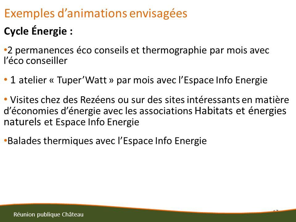17 Réunion publique Château Exemples danimations envisagées Cycle Énergie : 2 permanences éco conseils et thermographie par mois avec léco conseiller
