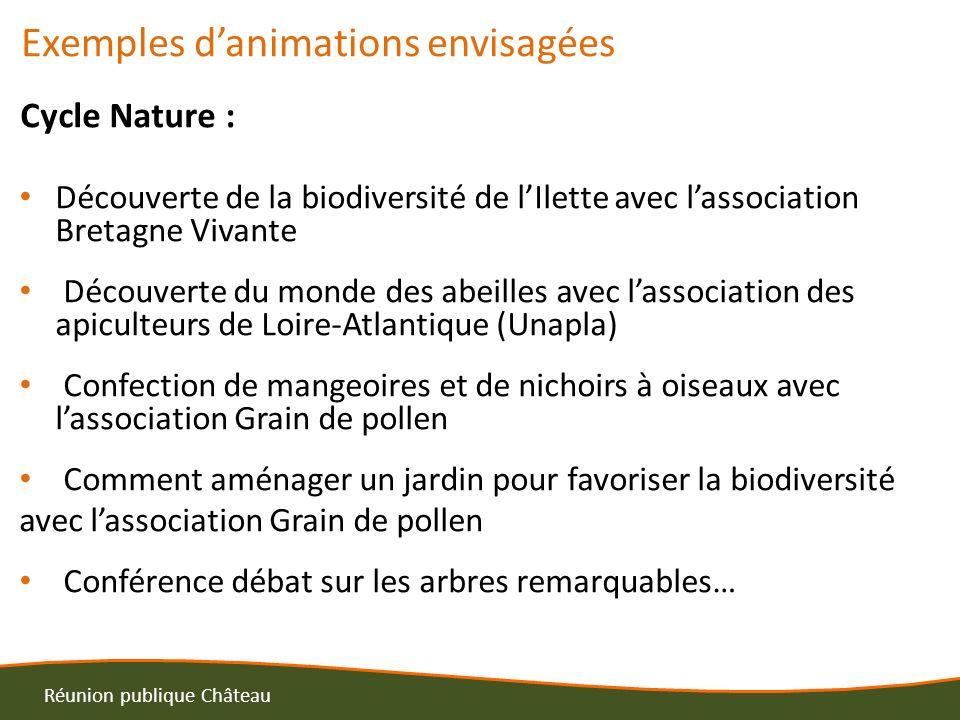 Exemples danimations envisagées Cycle Nature : Découverte de la biodiversité de lIlette avec lassociation Bretagne Vivante Découverte du monde des abe