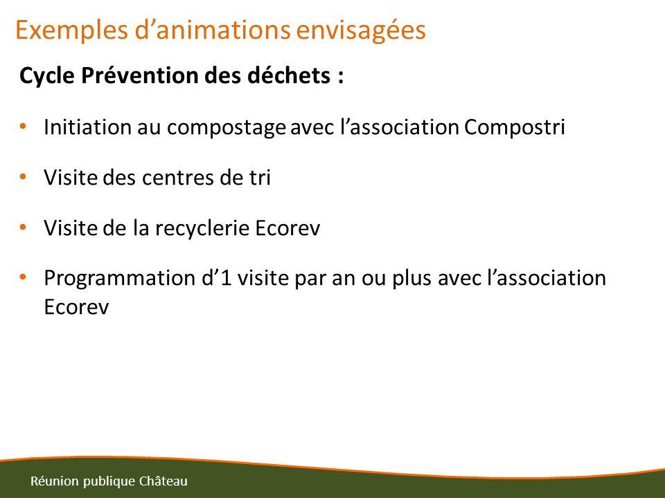 Exemples danimations envisagées Cycle Prévention des déchets : Initiation au compostage avec lassociation Compostri Visite des centres de tri Visite d