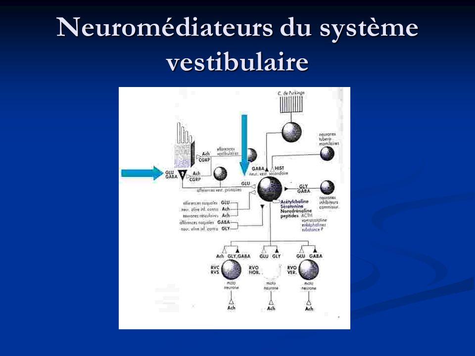 Neuromédiateurs du système vestibulaire