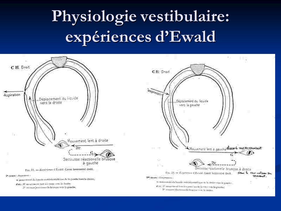 Physiologie vestibulaire: expériences dEwald