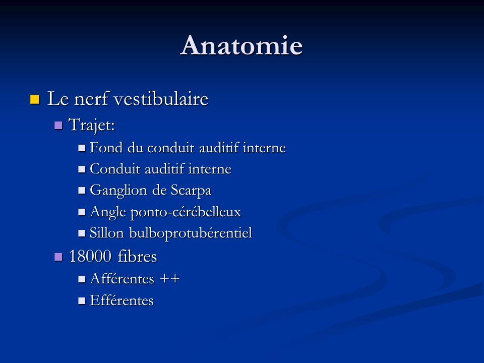 Anatomie Le nerf vestibulaire Le nerf vestibulaire Trajet: Trajet: Fond du conduit auditif interne Fond du conduit auditif interne Conduit auditif int