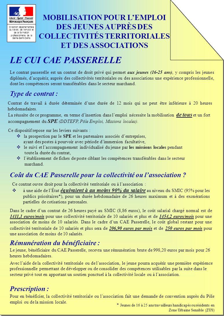 Direction départementale du travail, de lemploi et de la formation professionnelle de la Seine-Saint-Denis MOBILISATION POUR LEMPLOI DES JEUNES AUPRÈS