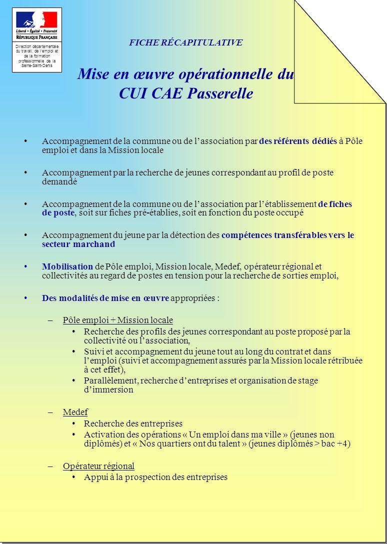 Direction départementale du travail, de lemploi et de la formation professionnelle de la Seine-Saint-Denis FICHE RÉCAPITULATIVE Mise en œuvre opératio