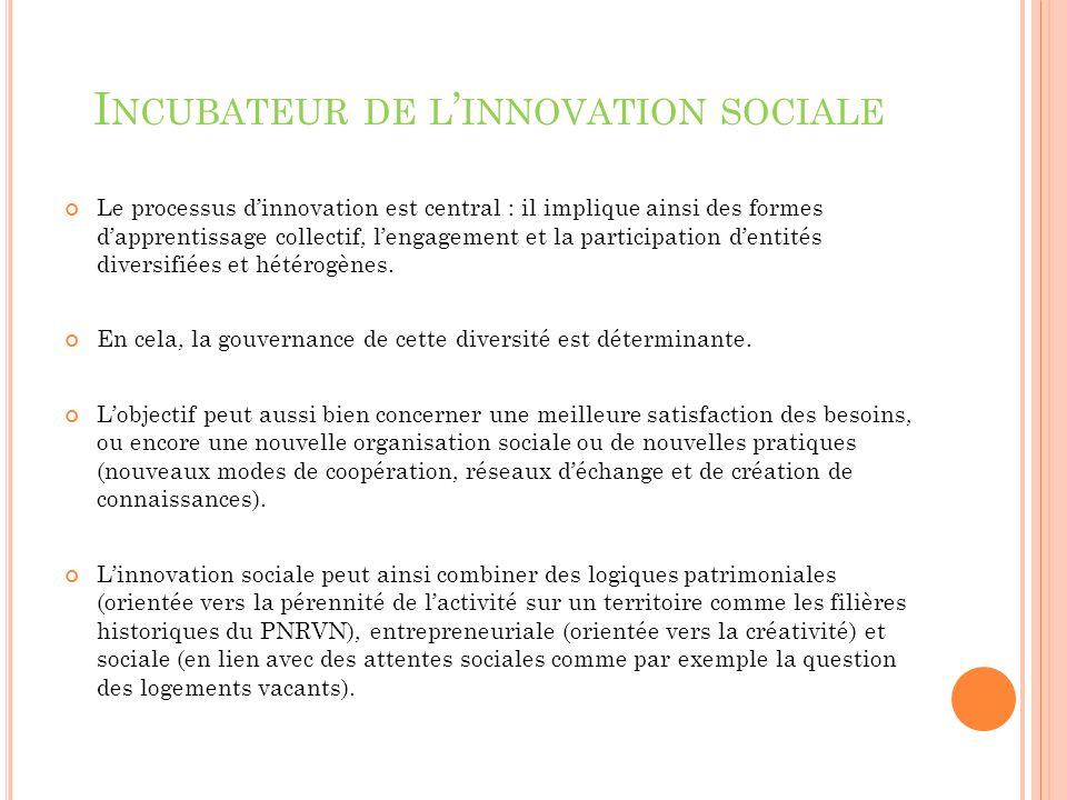 I NCUBATEUR DE L INNOVATION SOCIALE Le processus dinnovation est central : il implique ainsi des formes dapprentissage collectif, lengagement et la participation dentités diversifiées et hétérogènes.