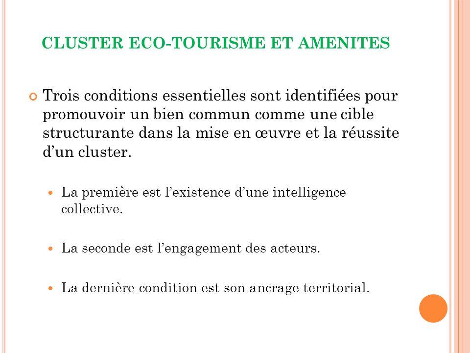 CLUSTER ECO-TOURISME ET AMENITES Trois conditions essentielles sont identifiées pour promouvoir un bien commun comme une cible structurante dans la mise en œuvre et la réussite dun cluster.