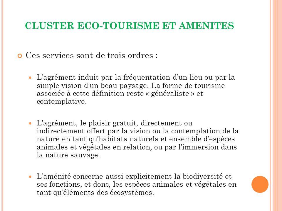 CLUSTER ECO-TOURISME ET AMENITES Ces services sont de trois ordres : Lagrément induit par la fréquentation dun lieu ou par la simple vision dun beau paysage.