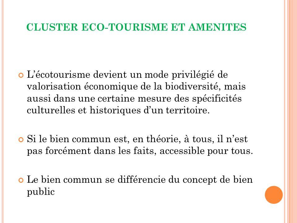 CLUSTER ECO-TOURISME ET AMENITES Lécotourisme devient un mode privilégié de valorisation économique de la biodiversité, mais aussi dans une certaine mesure des spécificités culturelles et historiques dun territoire.