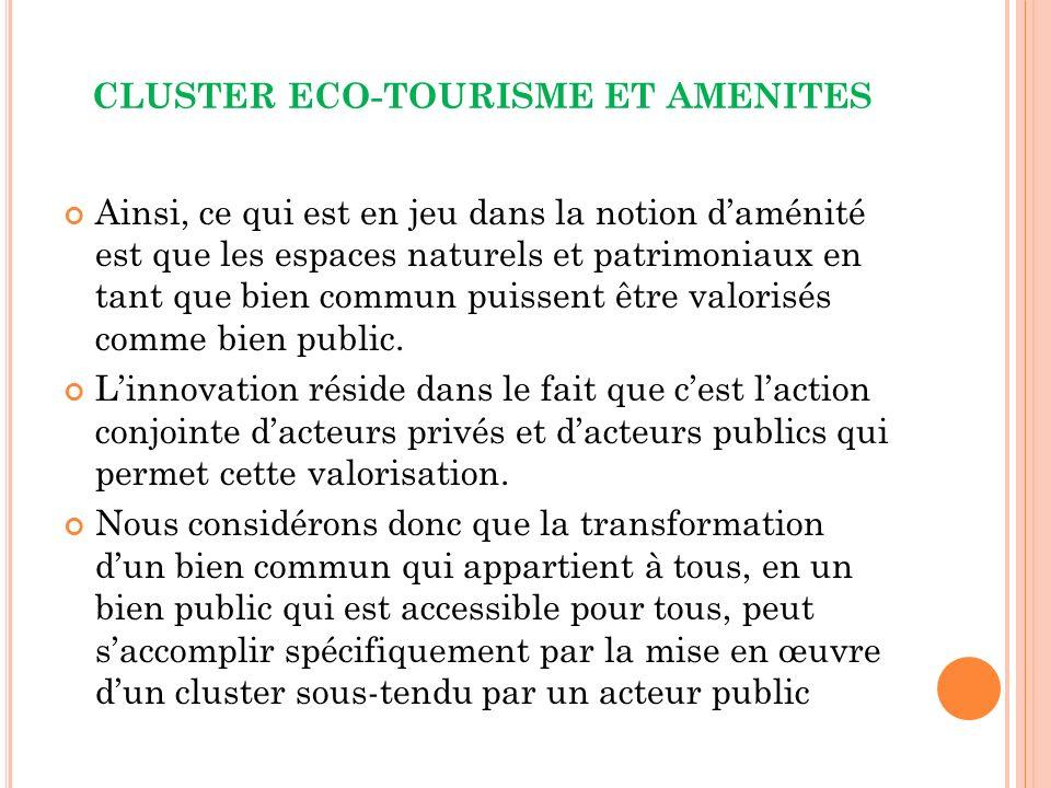 CLUSTER ECO-TOURISME ET AMENITES Ainsi, ce qui est en jeu dans la notion daménité est que les espaces naturels et patrimoniaux en tant que bien commun puissent être valorisés comme bien public.
