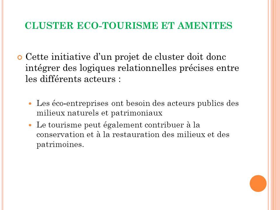 CLUSTER ECO-TOURISME ET AMENITES Cette initiative dun projet de cluster doit donc intégrer des logiques relationnelles précises entre les différents acteurs : Les éco-entreprises ont besoin des acteurs publics des milieux naturels et patrimoniaux Le tourisme peut également contribuer à la conservation et à la restauration des milieux et des patrimoines.