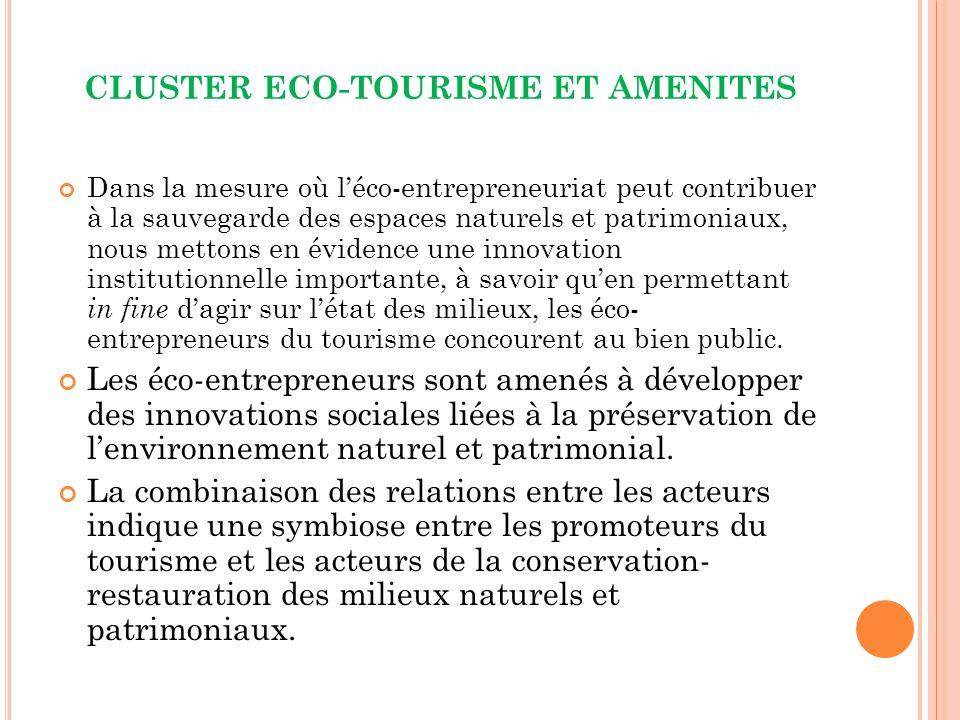 CLUSTER ECO-TOURISME ET AMENITES Dans la mesure où léco-entrepreneuriat peut contribuer à la sauvegarde des espaces naturels et patrimoniaux, nous mettons en évidence une innovation institutionnelle importante, à savoir quen permettant in fine dagir sur létat des milieux, les éco- entrepreneurs du tourisme concourent au bien public.