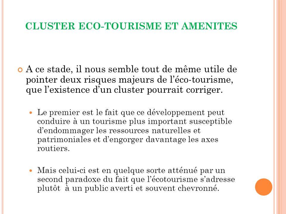 CLUSTER ECO-TOURISME ET AMENITES A ce stade, il nous semble tout de même utile de pointer deux risques majeurs de léco-tourisme, que lexistence dun cluster pourrait corriger.