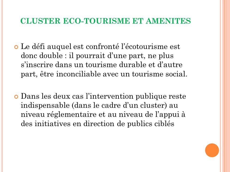 CLUSTER ECO-TOURISME ET AMENITES Le défi auquel est confronté lécotourisme est donc double : il pourrait dune part, ne plus sinscrire dans un tourisme durable et dautre part, être inconciliable avec un tourisme social.