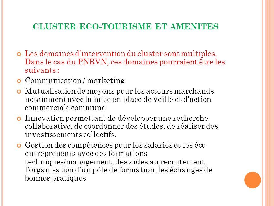 CLUSTER ECO-TOURISME ET AMENITES Les domaines dintervention du cluster sont multiples.