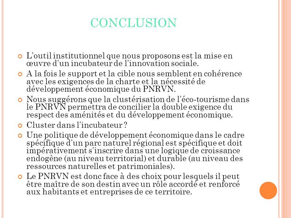 CONCLUSION Loutil institutionnel que nous proposons est la mise en œuvre dun incubateur de linnovation sociale.