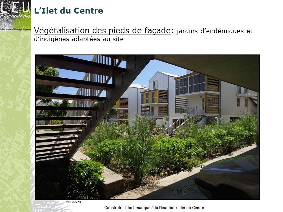 Végétalisation des pieds de façade: jardins dendémiques et dindigènes adaptées au site Photo: DOURIS Construire bioclimatique à la Réunion : Ilet du C