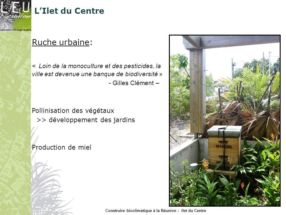 Ruche urbaine: « Loin de la monoculture et des pesticides, la ville est devenue une banque de biodiversité » - Gilles Clément – Pollinisation des végé