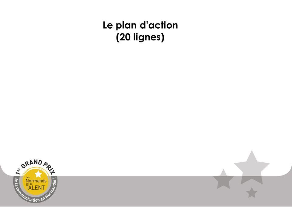 Le plan d'action (20 lignes)