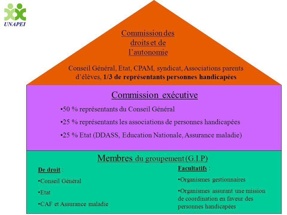 Membres du groupement (G.I.P) Commission exécutive Commission des droits et de lautonomie Conseil Général, Etat, CPAM, syndicat, Associations parents