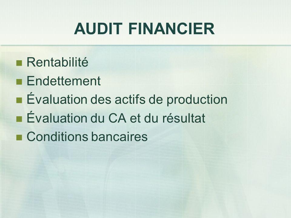 AUDIT FINANCIER Rentabilité Endettement Évaluation des actifs de production Évaluation du CA et du résultat Conditions bancaires
