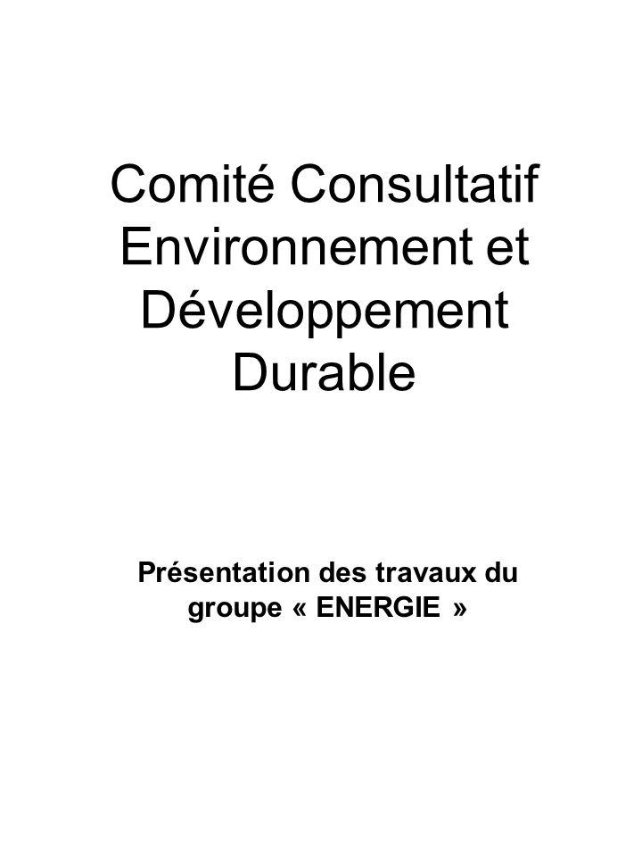 NOTRE MISSION Formuler un choix de propositions pour réduire la consommation énergétique de lensemble de la presquîle: installations municipales mais aussi consommation et productions individuelles.