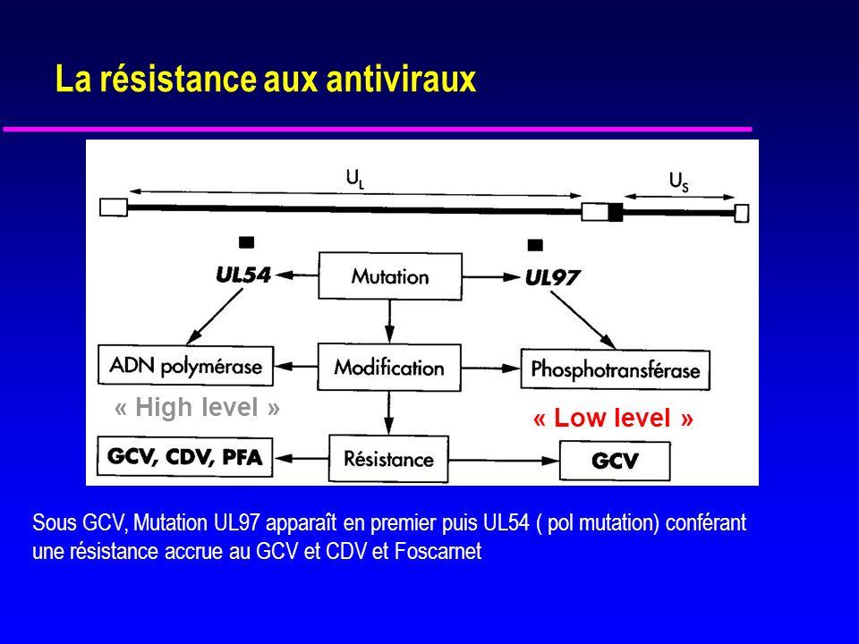 Résistance aux antiviraux u Suspecter si CV persistante ou croissante après 6 semaines de GCV ou maladie persistante après 2 semaines de plein traitement u Mutation gène UL97 (phosphotransférase) u Mutation gène UL54 de l ADN polymérase u Résistance croisée entre le GCV et le cidofovir/ foscarnet si mutation de UL97 et UL54 u Diagnostic précoce par PCR (recherche de mutations UL 97 et UL54) u Transplantation d organe (rein,cœur, poumon) u Traitement prolongé par GCV oral à faibles doses u Dépend de la concentration dantiviraux, de la charge virale et du degré dimmunosuppression u Maribavir ?