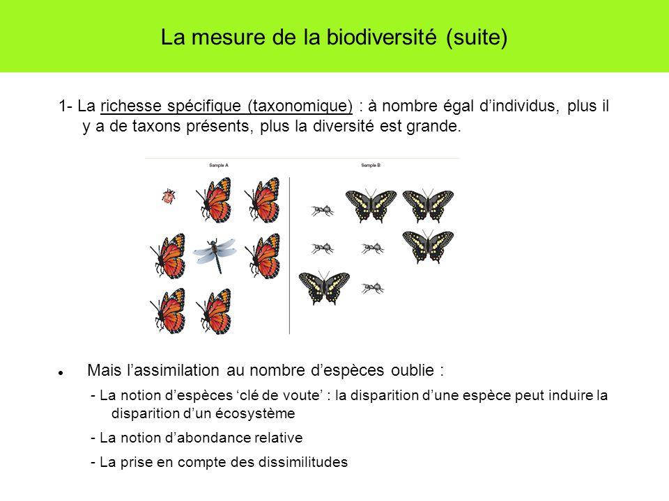 La mesure de la biodiversité (suite) 1- La richesse spécifique (taxonomique) : à nombre égal dindividus, plus il y a de taxons présents, plus la diversité est grande.
