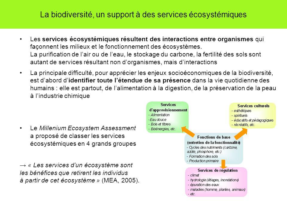 La biodiversité, un support à des services écosystémiques Les services écosystémiques résultent des interactions entre organismes qui façonnent les milieux et le fonctionnement des écosystèmes.