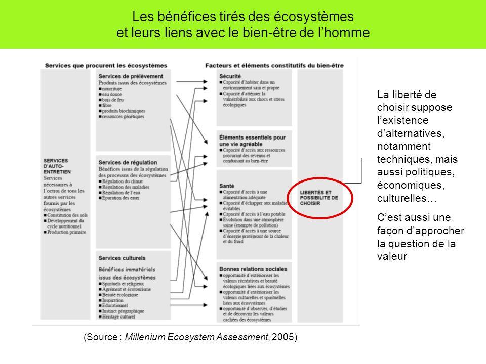 Les bénéfices tirés des écosystèmes et leurs liens avec le bien-être de lhomme (Source : Millenium Ecosystem Assessment, 2005) La liberté de choisir suppose lexistence dalternatives, notamment techniques, mais aussi politiques, économiques, culturelles… Cest aussi une façon dapprocher la question de la valeur
