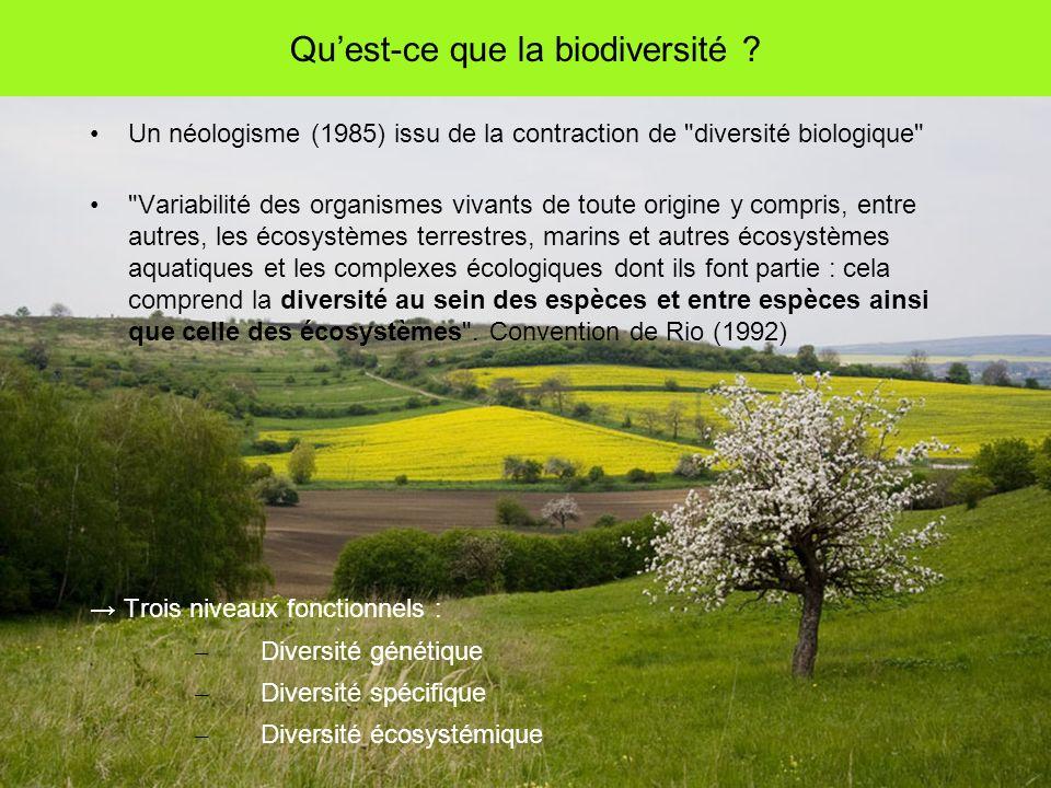 Quest-ce que la biodiversité .