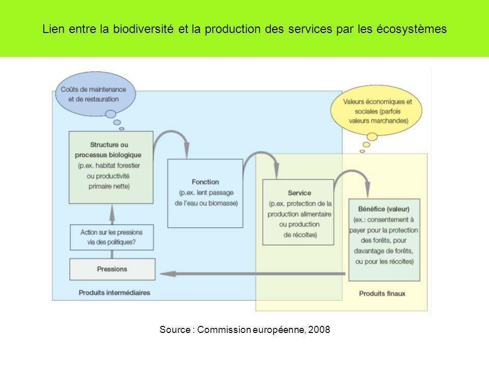 Lien entre la biodiversité et la production des services par les écosystèmes Source : Commission européenne, 2008