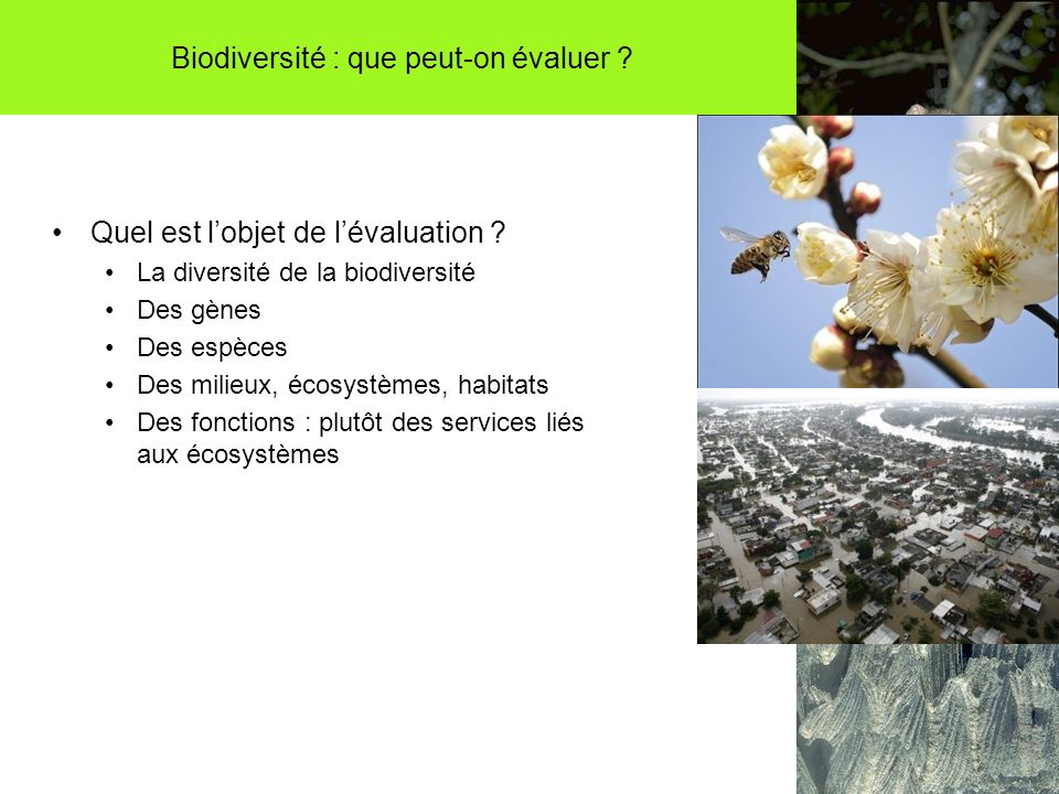 Biodiversité : que peut-on évaluer . Quel est lobjet de lévaluation .