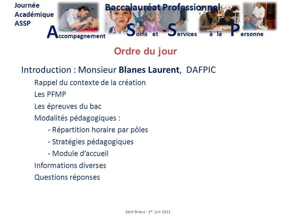 Introduction : Monsieur Blanes Laurent, DAFPIC Rappel du contexte de la création Les PFMP Les épreuves du bac Modalités pédagogiques : - Répartition h