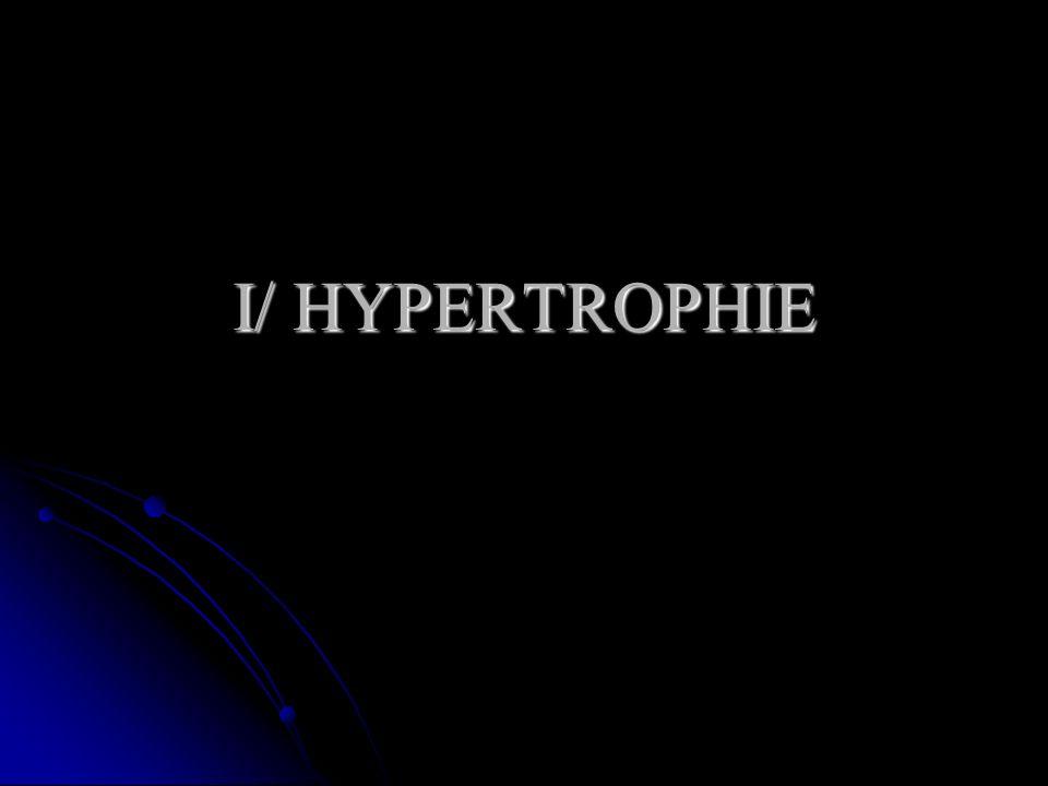 I/ HYPERTROPHIE