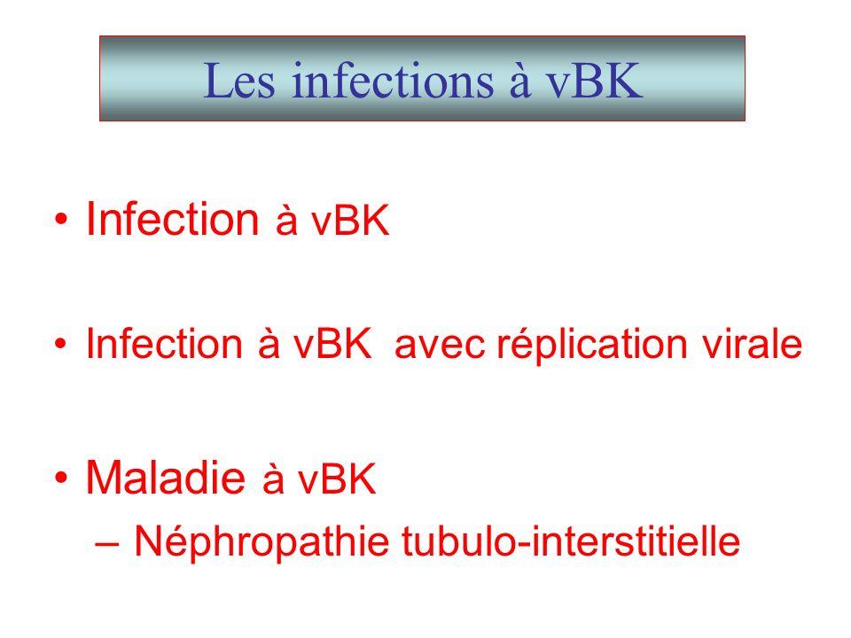 Les infections à vBK Infection à vBK Infection à vBK avec réplication virale Maladie à vBK – Néphropathie tubulo-interstitielle