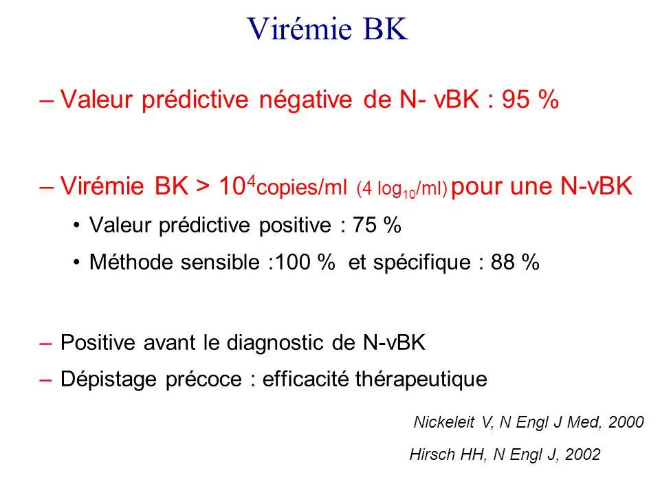 Virémie BK –Valeur prédictive négative de N- vBK : 95 % –Virémie BK > 10 4 copies/ml (4 log 10 /ml) pour une N-vBK Valeur prédictive positive : 75 % Méthode sensible :100 % et spécifique : 88 % –Positive avant le diagnostic de N-vBK –Dépistage précoce : efficacité thérapeutique Nickeleit V, N Engl J Med, 2000 Hirsch HH, N Engl J, 2002