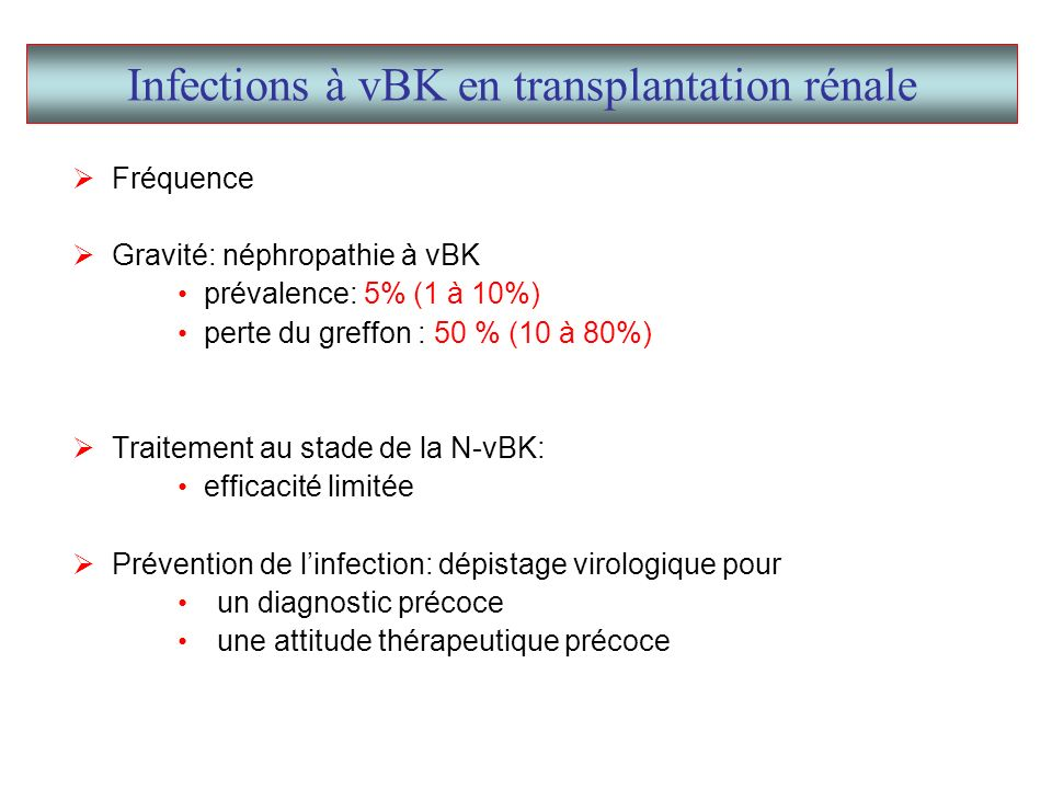 M4M4 +15j Créatininémie (µmol/l)271224 Prograf (mg)44 C 0 tacro (ng/ml)4,53,2 MMF (mg)1000 Prednisone (mg)10 virurie BK (copies/ml) virurie JC (copies/ml) >10 8 virémie BK (copies/ml) virémie JC (copies/ml) 17000 2000 44000 5700 Observation