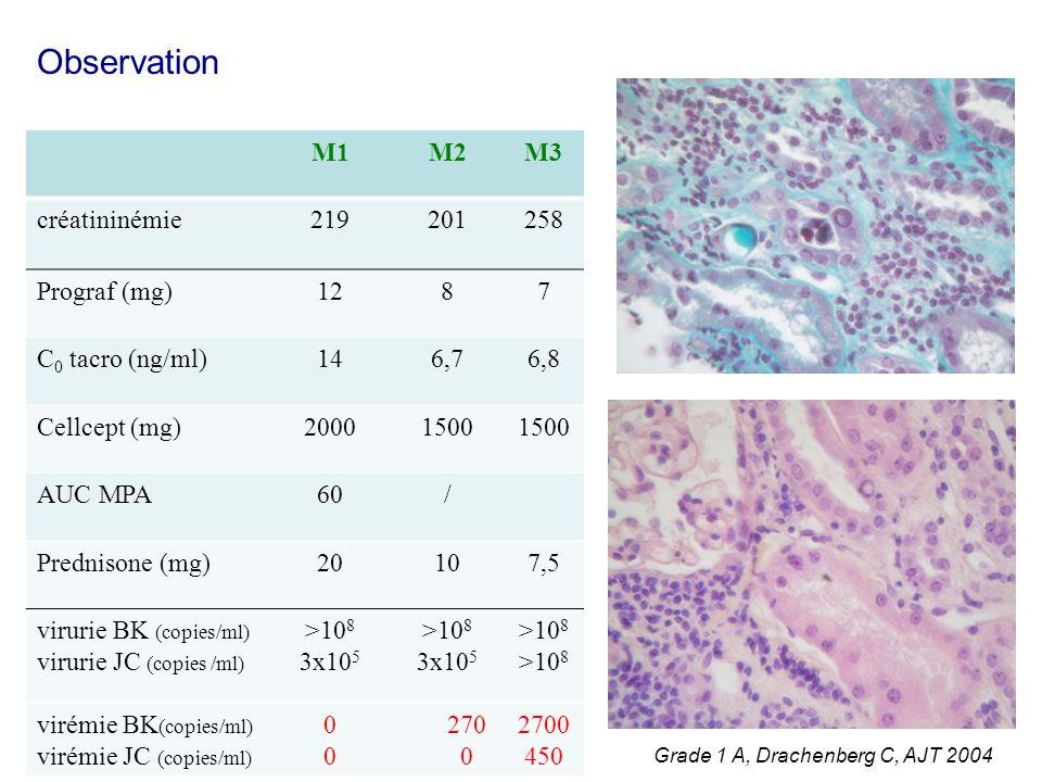 M1M2M3 créatininémie219201258 Prograf (mg)1287 C 0 tacro (ng/ml)146,76,8 Cellcept (mg)20001500 AUC MPA60/ Prednisone (mg)20107,5 virurie BK (copies/ml) virurie JC (copies /ml) >10 8 3x10 5 >10 8 virémie BK (copies/ml) virémie JC (copies/ml) 0000 270 0 2700 450 Observation Grade 1 A, Drachenberg C, AJT 2004