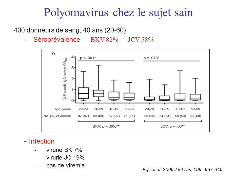 Polyomavirus chez le sujet sain 400 donneurs de sang, 40 ans (20-60) – Séroprévalence BKV 82% JCV 58% - Infection -virurie BK 7% -virurie JC 19% -pas de virémie Egli et al.