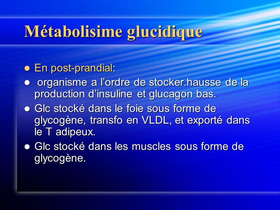 Métabolisime glucidique En post-prandial: En post-prandial: organisme a lordre de stocker.hausse de la production dinsuline et glucagon bas. organisme