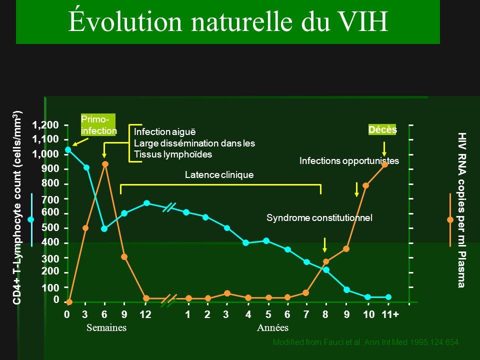 Évolution naturelle du VIH 1,200 CD4+ T-Lymphocyte count (cells/mm 3 ) 1,100 1,000 900 800 700 600 500 400 300 200 100 0 11+1098765432112963 SemainesAnnées HIV RNA copies per ml Plasma Primo- infection Infection aiguë Large dissémination dans les Tissus lymphoïdes Latence clinique Infections opportunistes Décès Syndrome constitutionnel 0 Modified from Fauci et al.