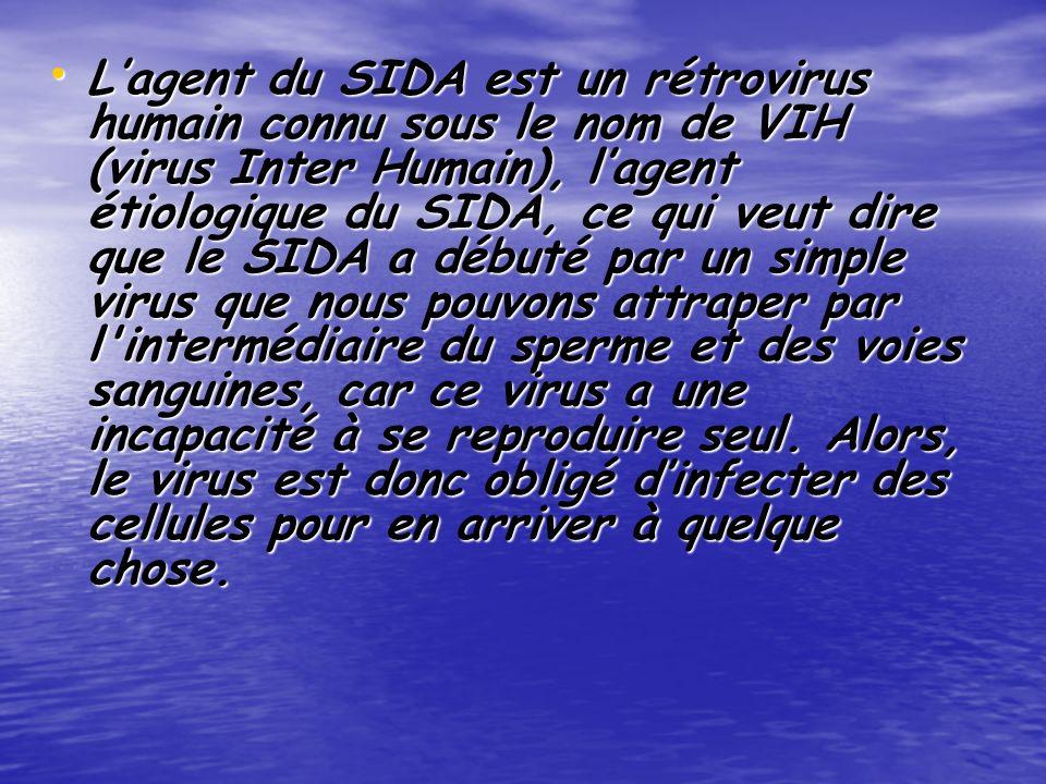 Lagent du SIDA est un rétrovirus humain connu sous le nom de VIH (virus Inter Humain), lagent étiologique du SIDA, ce qui veut dire que le SIDA a débuté par un simple virus que nous pouvons attraper par l intermédiaire du sperme et des voies sanguines, car ce virus a une incapacité à se reproduire seul.