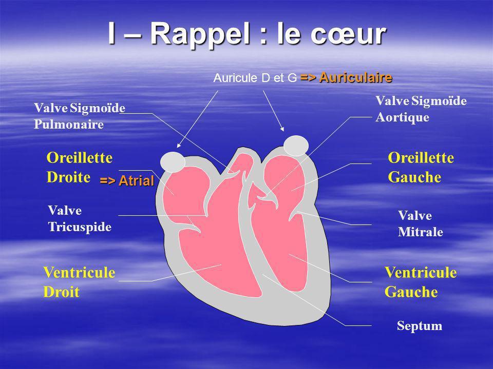 I – Rappel : le cœur Oreillette Droite Ventricule Droit Oreillette Gauche Ventricule Gauche Valve Tricuspide Valve Sigmoïde Pulmonaire Valve Mitrale V