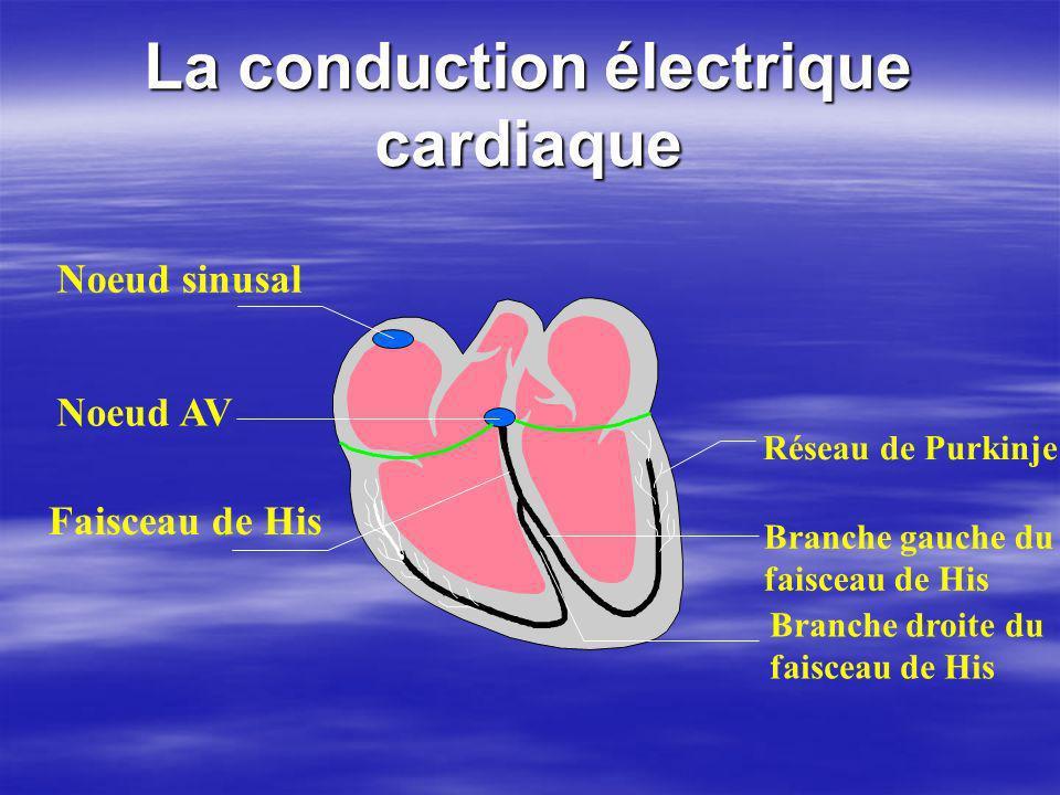La conduction électrique cardiaque Noeud sinusal Faisceau de His Branche droite du faisceau de His Branche gauche du faisceau de His Réseau de Purkinj