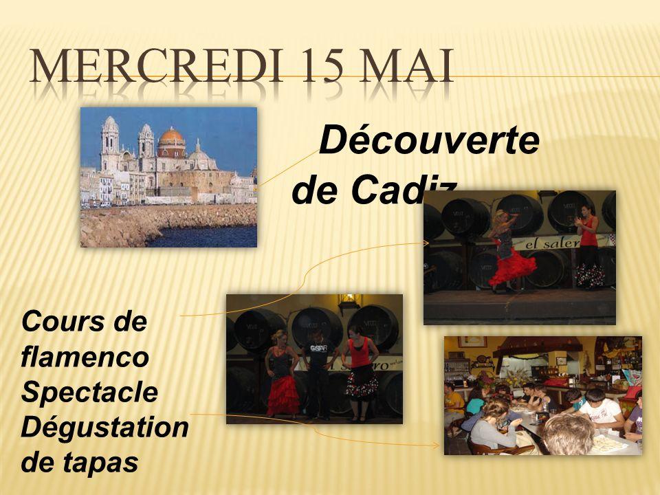 Visite dune Finca de Toros à Medina Sidonia