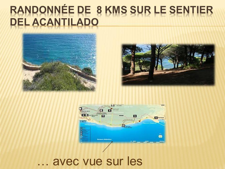 … avec vue sur les côtes marocaines !