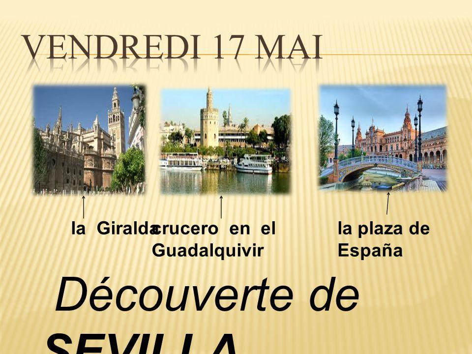 Découverte de SEVILLA la Giraldacrucero en el Guadalquivir la plaza de España