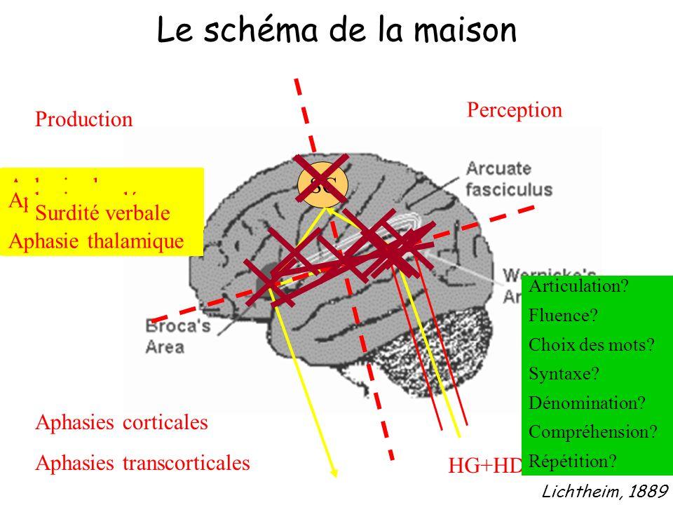 Lichtheim, 1889 Le schéma de la maison Production Perception SC Aphasies corticales Aphasies transcorticales Aphasie de Broca Aphasie globale Aphasie