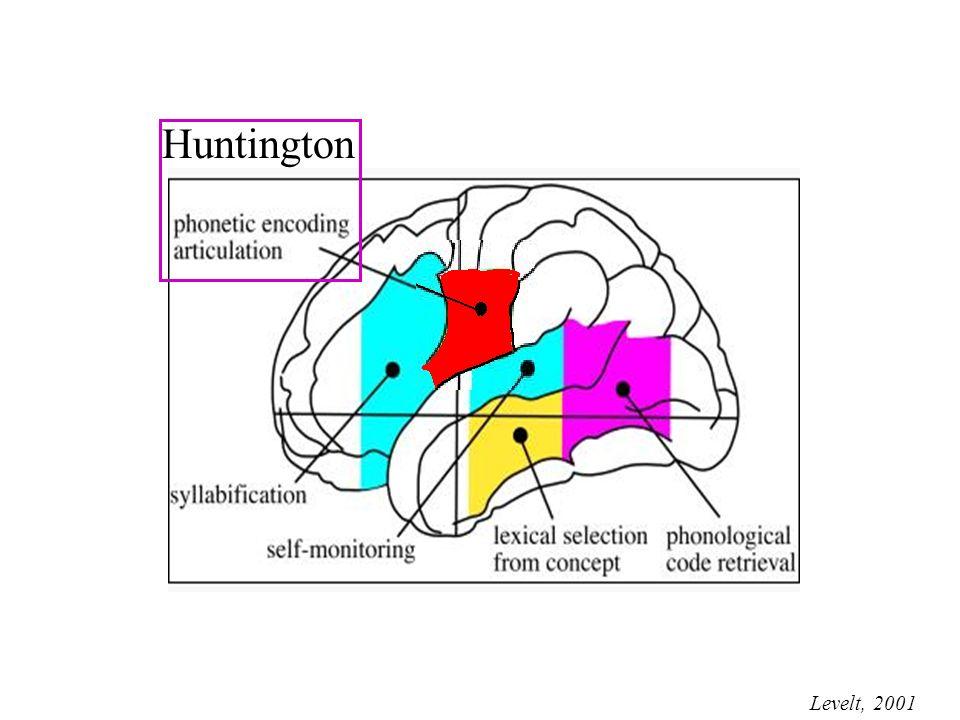 Levelt, 2001 Huntington