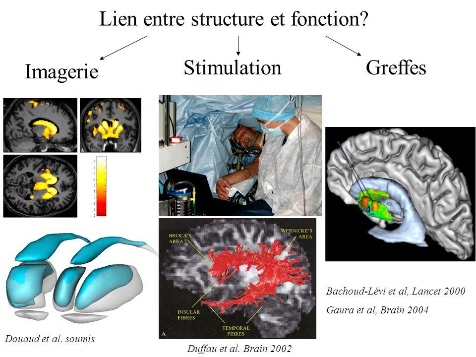 Lien entre structure et fonction? Douaud et al. soumis Duffau et al. Brain 2002 Bachoud-Lévi et al, Lancet 2000 Gaura et al, Brain 2004 Imagerie Stimu